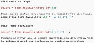 Figura 2. Descripción básica de SQL Injection