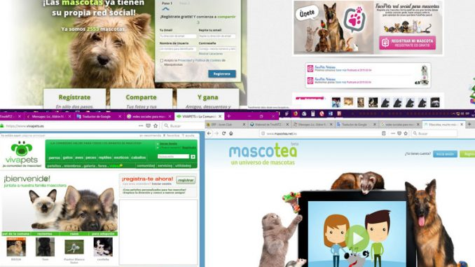 Las mascotas en las redes sociales