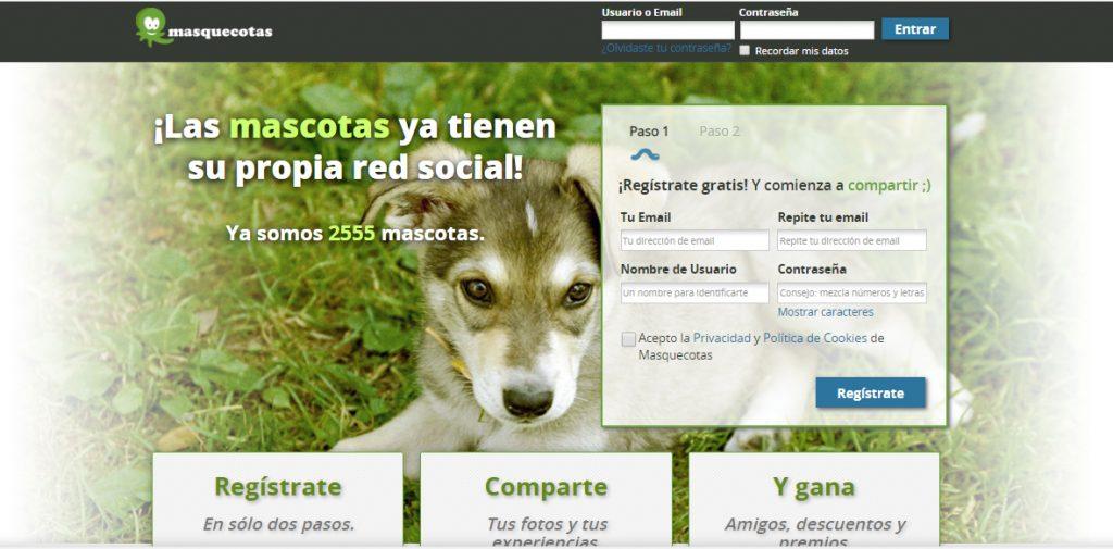Las mascotas en las redes sociales - Revista Tino