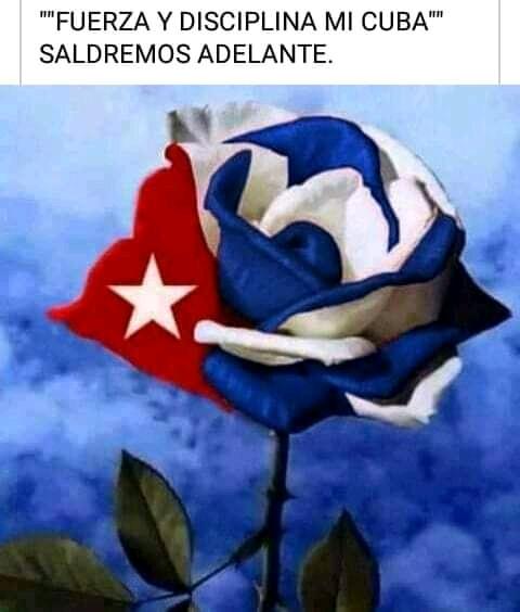 Los colores de nuestra bandera para los nasobucos - #RevistaTino